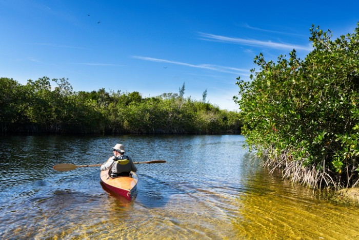 Homestead, FL U.S. - March 16, 2016: A leisure canoe in the Florida Everglades.  America's Everglades - The largest subtropical wilderness in the United States