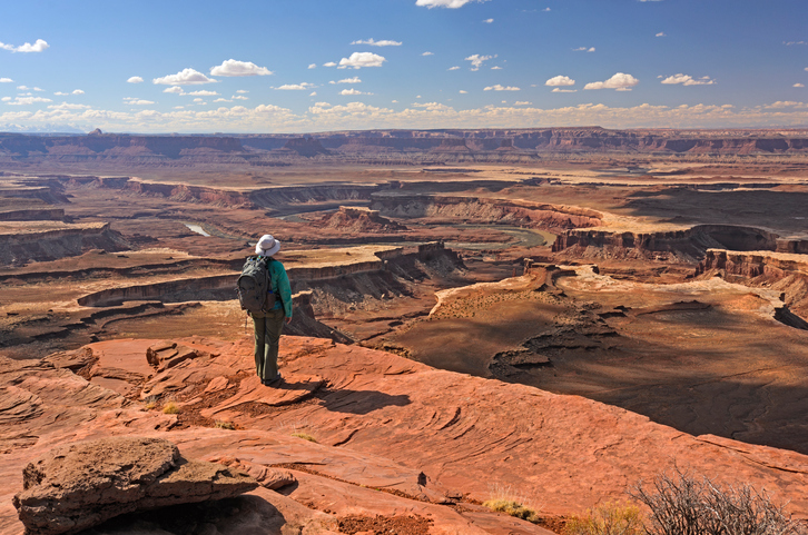 Looking Out Over the Canyonlands in Canyonlands National Park in Utah