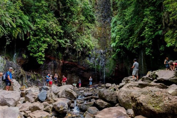 Foto por Divulgação / Turismo da Madeira