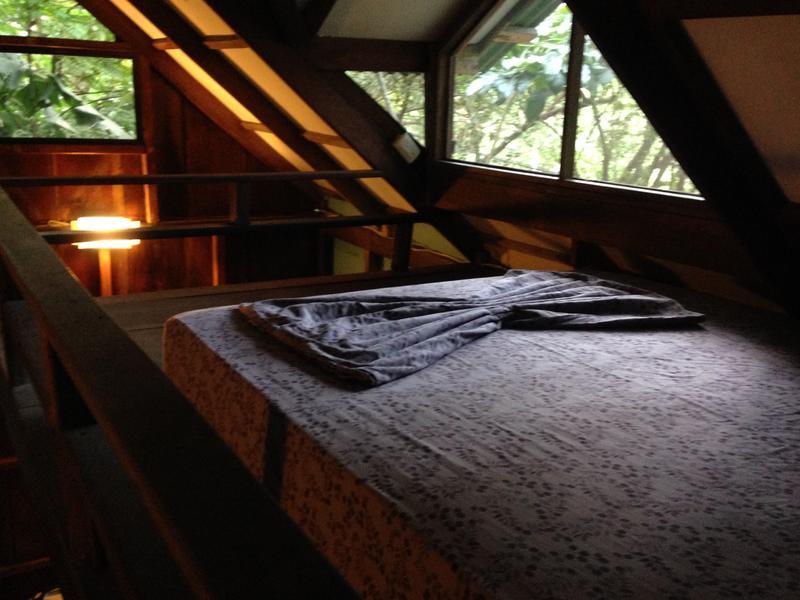 http://www.brazilian.hostelworld.com/hosteldetails.php/Luz-en-el-Cielo-Eco-B-and-B-Hostel/Montezuma/50633