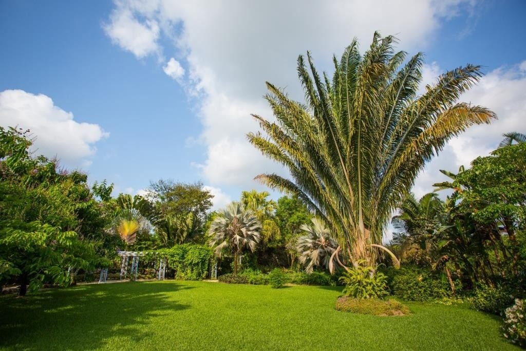 queen-elizabeth-ii-botanic-park-credito-will-burrard-lucas-2