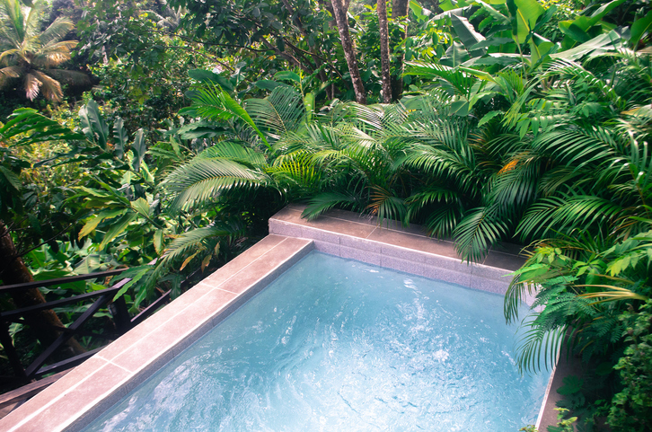 pool in lush green vegetation environmentally friendy setting