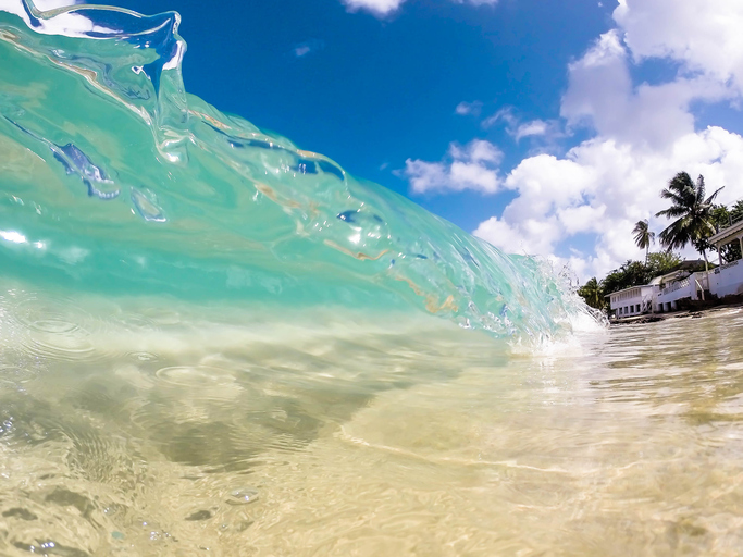 Clear wave in tropical sea of Barbados