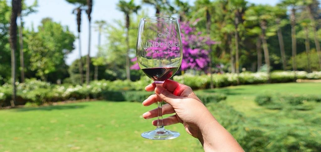 vinho_destaque