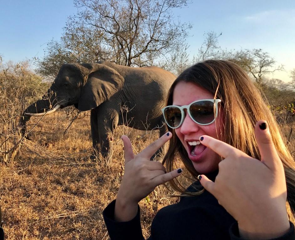 Elefantes de pertinho no Safári na África do Sul