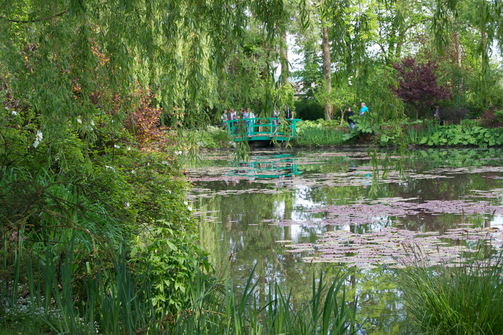 Water lilies on the pond outside Claude Monet's home in Giverny, France.