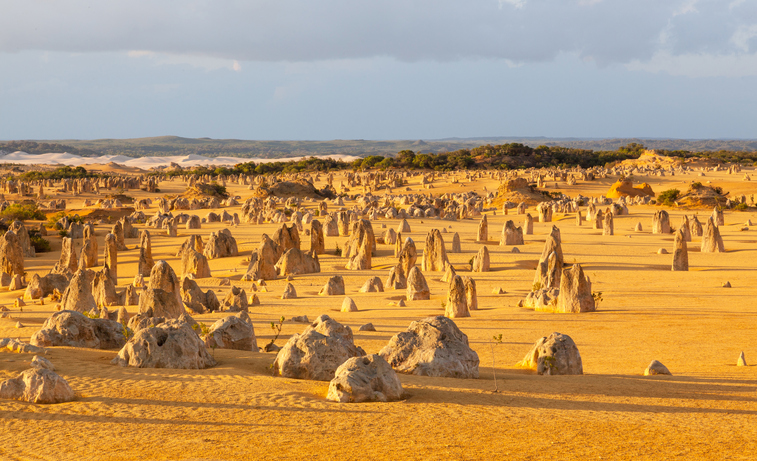 An overview of part of the Pinnacles Desert in the heart of the Nambung National Park, Western Australia.