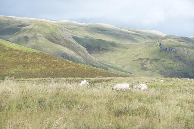 paisagem-escocesa-por-karina-sell