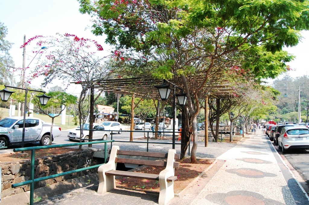 aguas-de-sao-pedro-avenida-principal-patricia-chemin