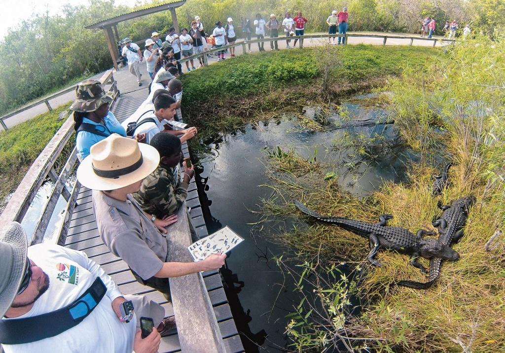 Foto por DIVULGAÇÃO / NPS.GOV/EVER