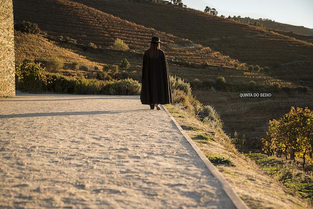 Roteiro pelas vinícolas do Douro