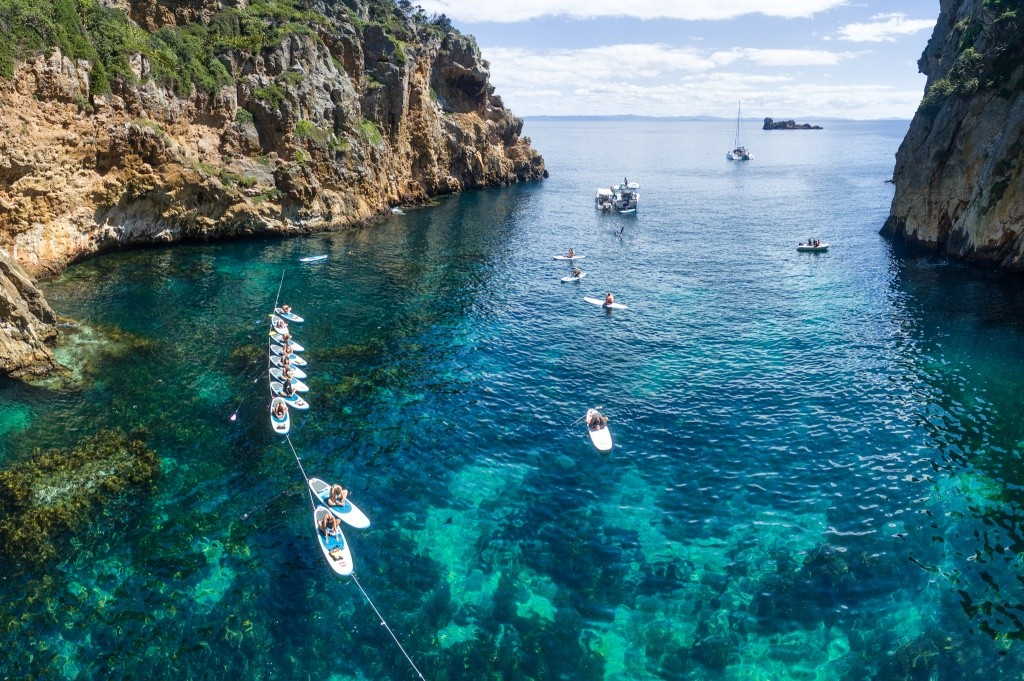 bay-of-islands-credito-sup-bro-tours-6