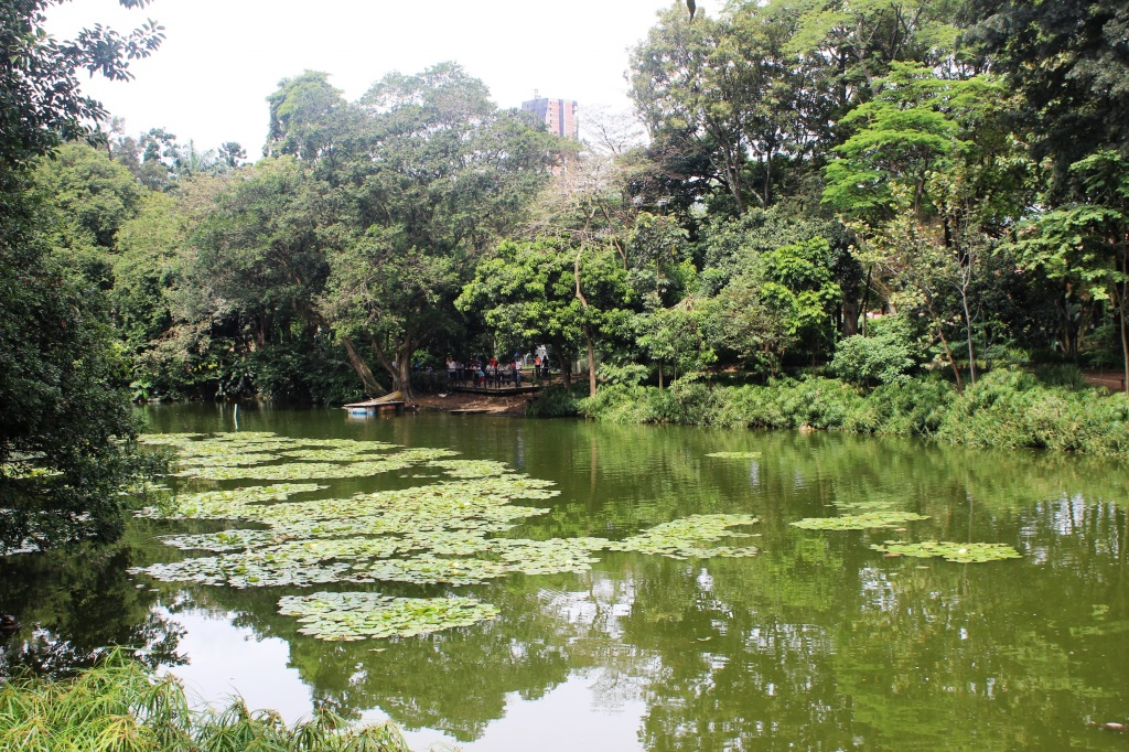 img_0225 Jardim Botanico Medellin Eliria Buso