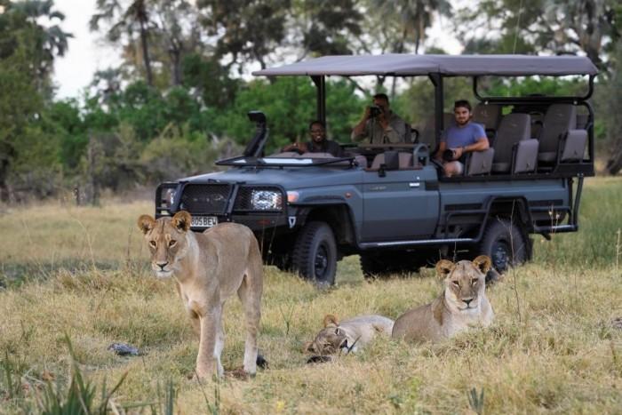 Foto por Divulgação / (c) Dana Allen / Wilderness Safaris