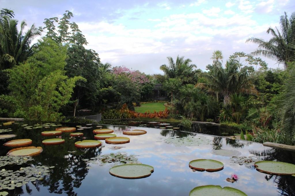 naples-botanical-garden-6-_patricia-chemin