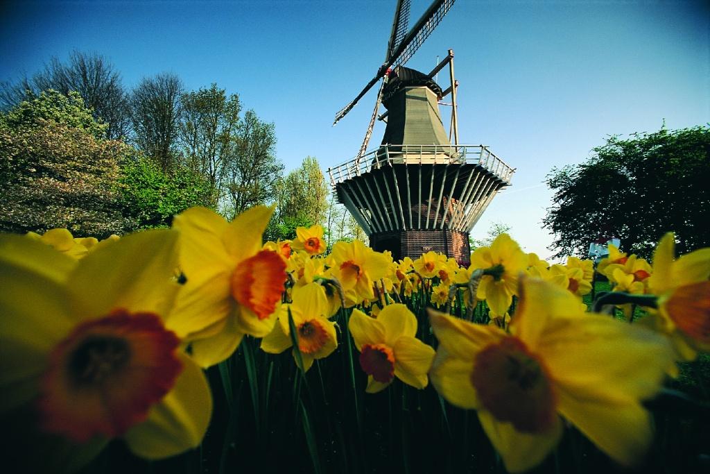 windmill-keukenhof-high_rgb_229