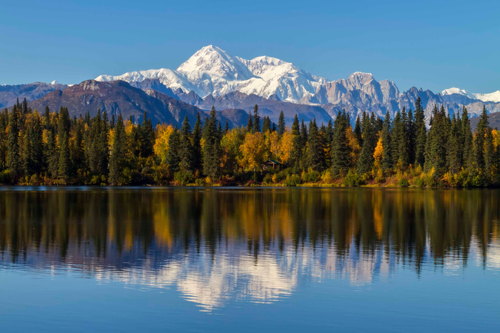 Byers Lake, Alaska is the closest view to Mount McKinley without being on the mountain.  During the fall color change in September this area explodes with yellow as the tree's change and prepare for winter's arrival.  Mount McKinley is North America's tallest mountain at 20,320'.
