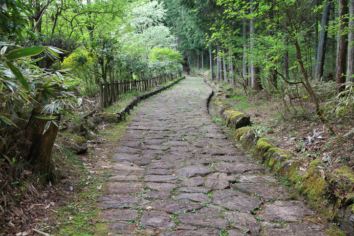 Japan forest path - historic Nakasendo route between Magome and Tsumago.