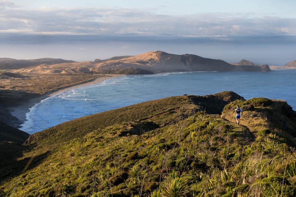 Foto por Te Raroa Trail