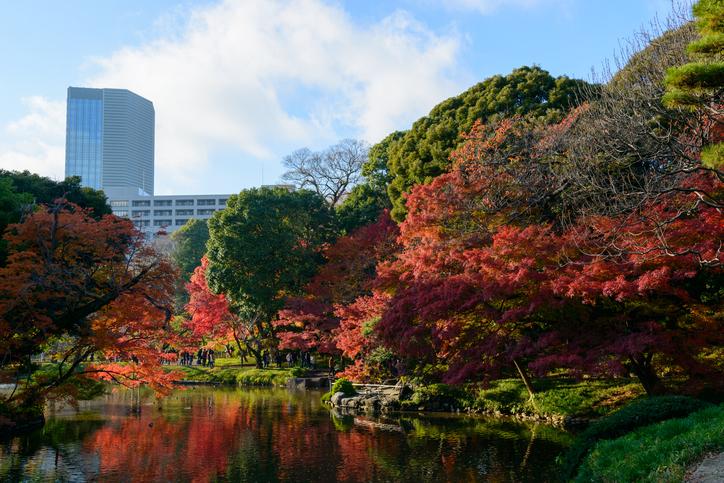 Foto via iStock/Hiro1775