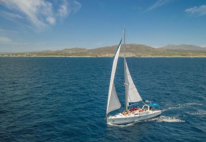 Foto por Cabo Adventures / Jay Gámez