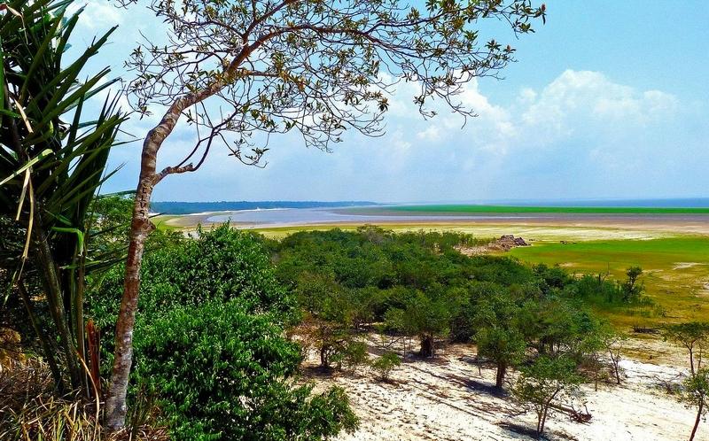 viajala-amazonia-brasil-pixabay