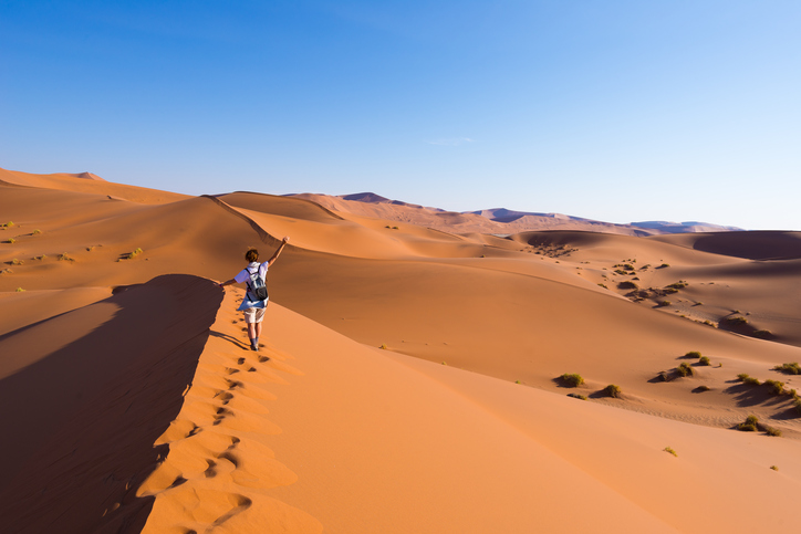 Tourist walking on the scenic dunes of Sossusvlei, Namib desert, Namib Naukluft National Park, Namibia. Afternoon light. Adventure and exploration in Africa.