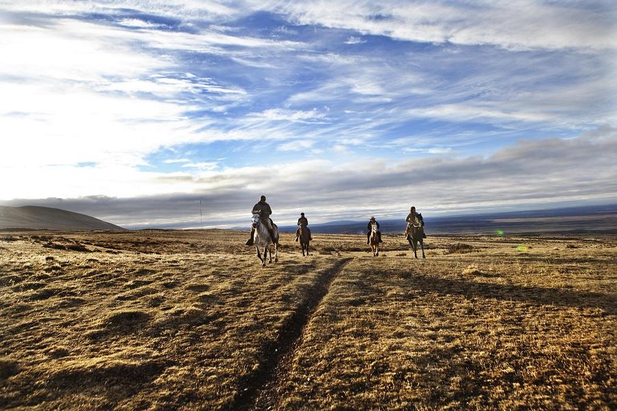tierra-patagonia-cavalos