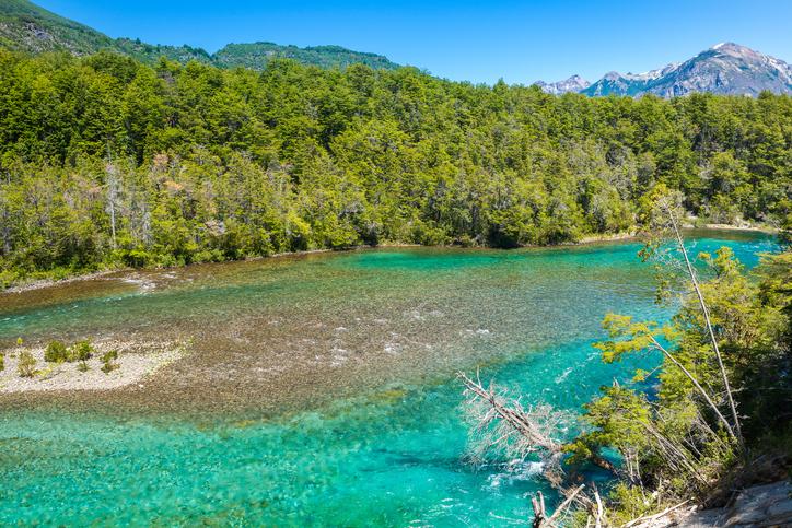 Menendez river, Los Alerces National park in Patagonia, Argentina