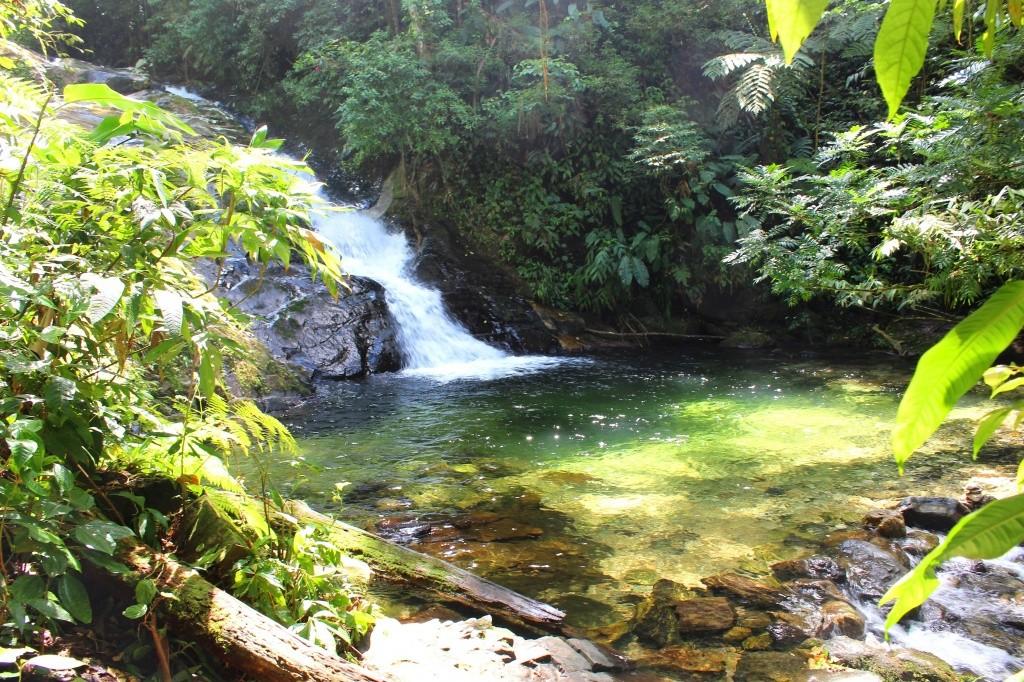 trilha-cachoeiras-do-sertao-do-cacau-1-patricia-chemin