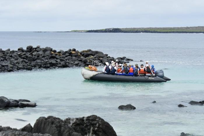 Foto por Divulgação / © Celebrity Cruises