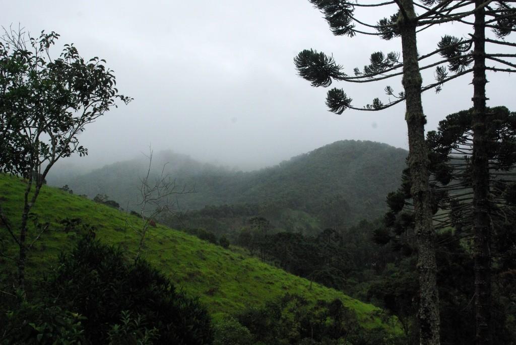 cunha_paisagem-com-neblina