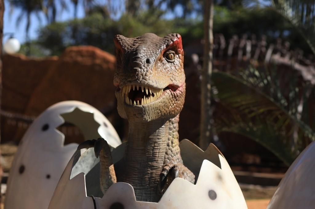 vale-dinossauros4