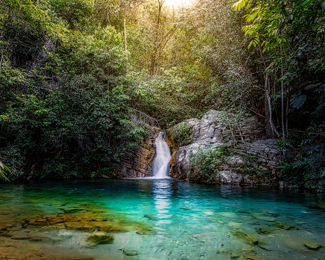 Foto via iStock por Rafael Serathiuk