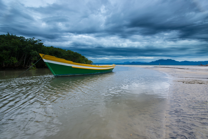 Fisherman's boat in a river anchored