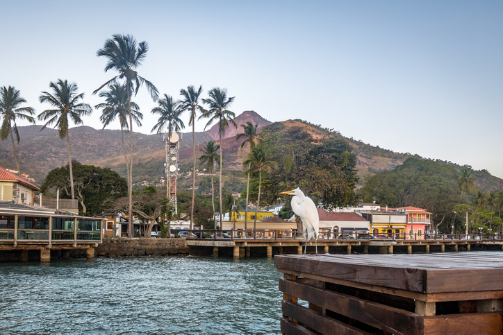 Great Egret and Vila (Village) Skyline in Ilhabela - Ilhabela, Sao Paulo, Brazil