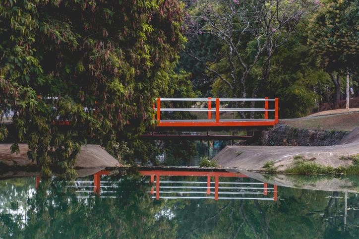 Foto via iStock por Tony Monti