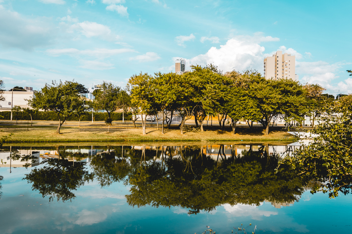 Indaiatuba, Brazil; 2018, july. The trees of a park reflected on the water of a rivel.
