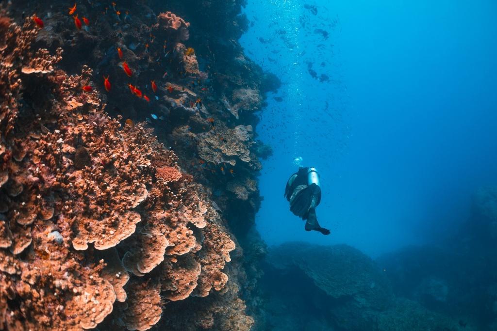 Imagem por Tourism Australia via Divulgação
