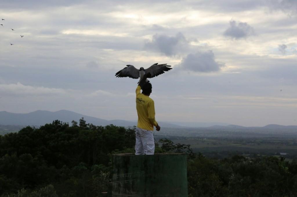 parque-dos-falcoes-foto-por-jorge-henrique-_-governo-do-estado-de-sergipe