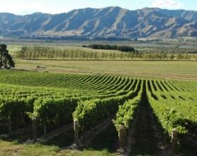 Foto via Divulgação/ Turismo Nova Zelândia