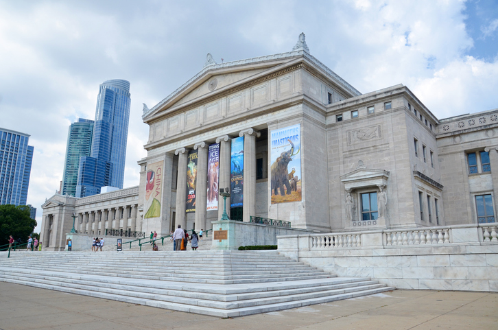 Chicago, IL, USA - August 15, 2015: Chicago's Field Museum of Natural History, shown on August 15, 2015, has a collection of over 24 million specimens, and hosts over 2 million visitors a year.