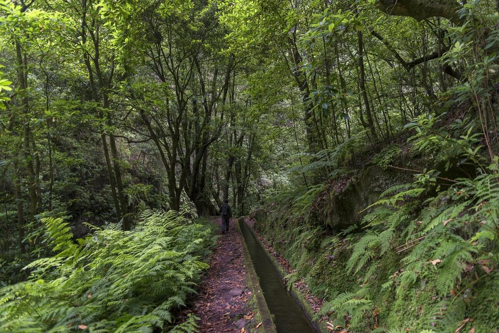 Foto por Francisco Correia / Turismo da Madeira