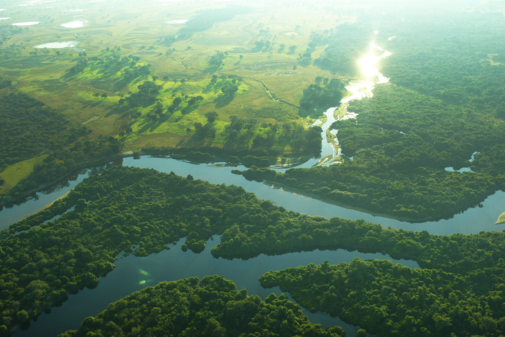 Aerial view of the wetlands of the Pantanal of Mato Grosso do Sul, Brazil