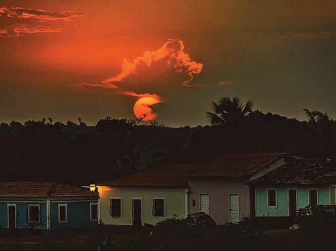 Imagem por Felipe Weber Spider