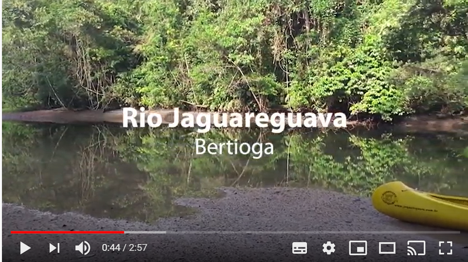 jaguareguava-video