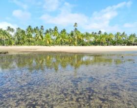 Península de Maraú  Foto: Holovaty via Istock