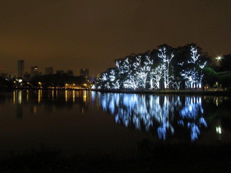 Fonte-Marcelo(8) ibirapuera árvores iluminado