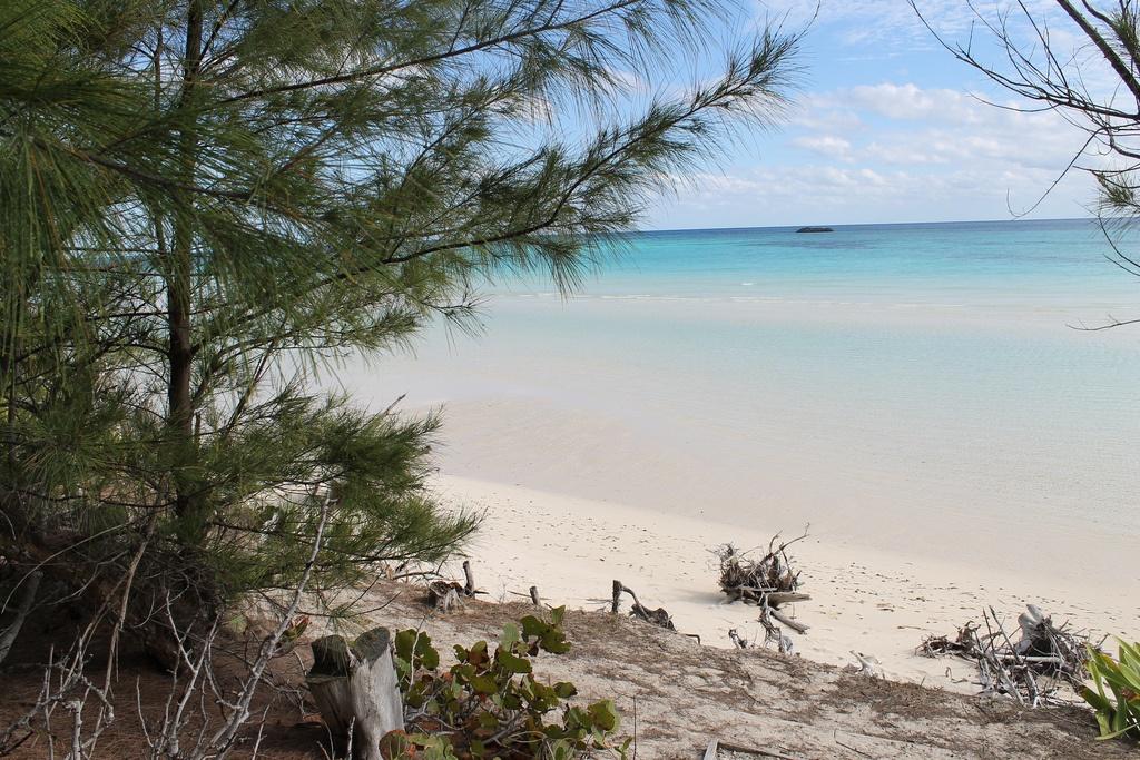 gold rock beach bahamas america central connie ma flickr