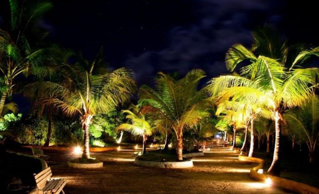 ilha dos aquários porto seguro divulgação turismo bahia